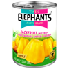 Jackfruit (dżakfrut) w syropie 565g - Twin Elephants & Earth Brand